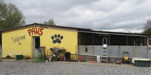 PAWS Animal Rescue